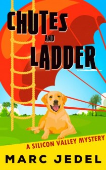 Chutes Ladder eBook Cover 1600_375x600